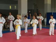 Club de Taekwondo Pietrosella