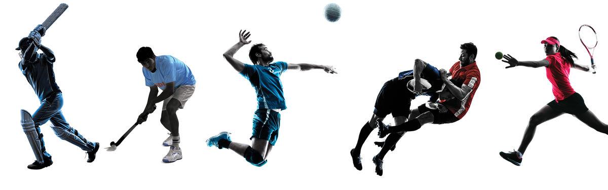 Pour tout savoir sur les activités sportives proposées sur la commune