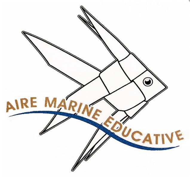 """L'école du Ruppione et le projet """"Aires Marines éducatives"""""""