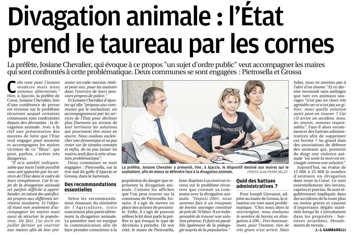 La commune de Pietrosella au coeur des questionnements sur la divagation animale : article et interview du maire.