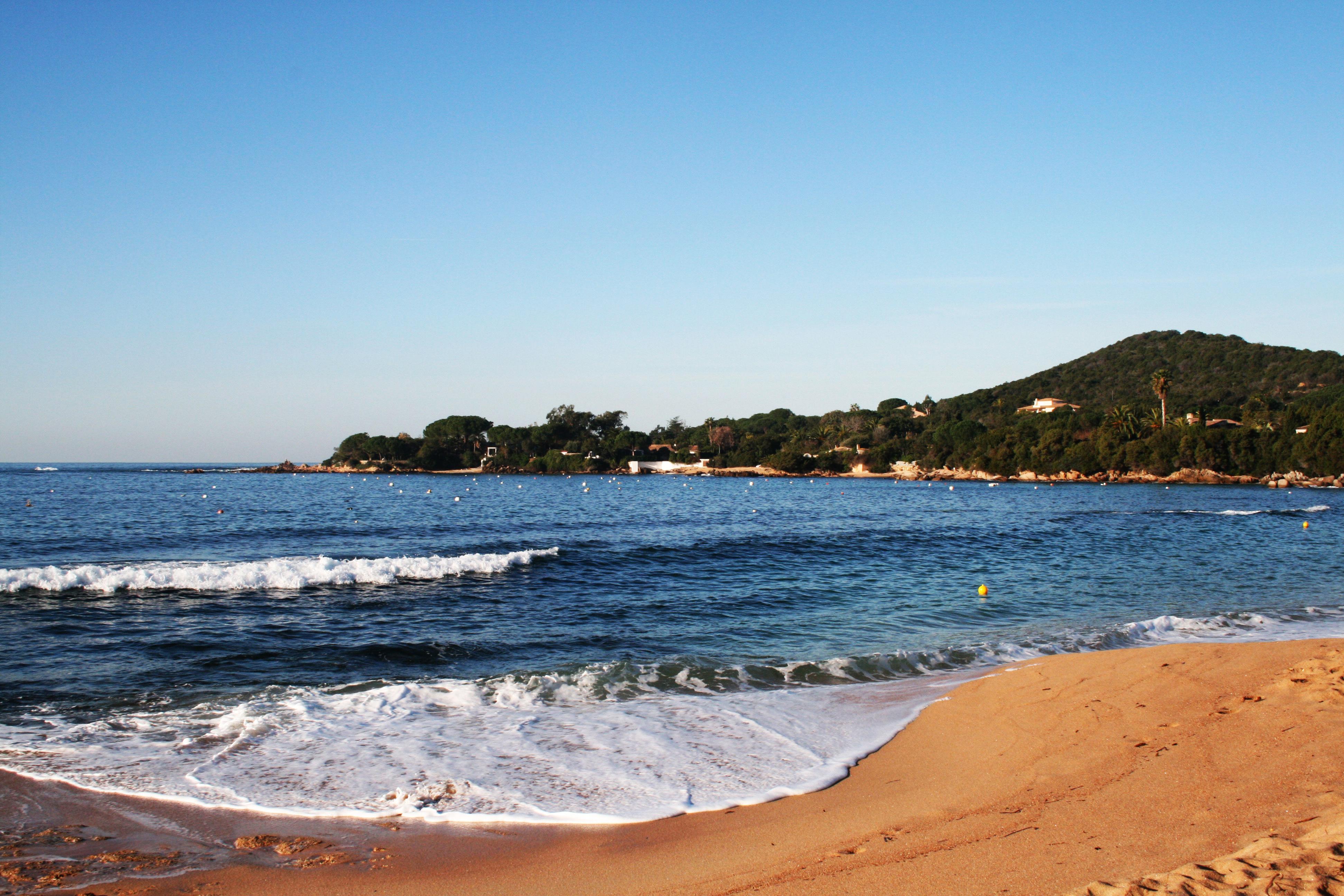 Informations sur les espèces marines protégées