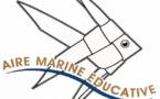 """1ère sortie """"Aires marines éducatives"""" pour les élèves de l'école du Ruppione !"""