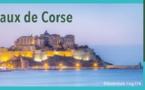 Consultez les rapports du Syvadec concernant les déchets et le tri en Corse pour l'année 2019